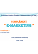 Cours de e-marketing